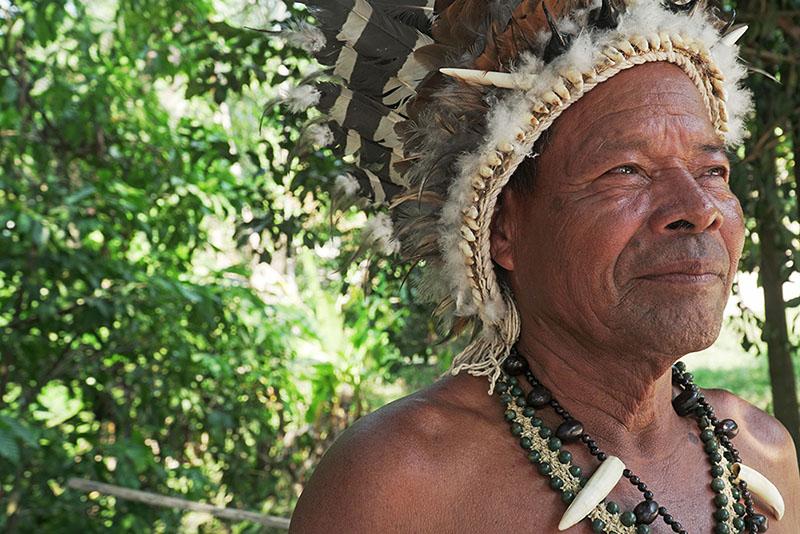 Soul of the Amazon
